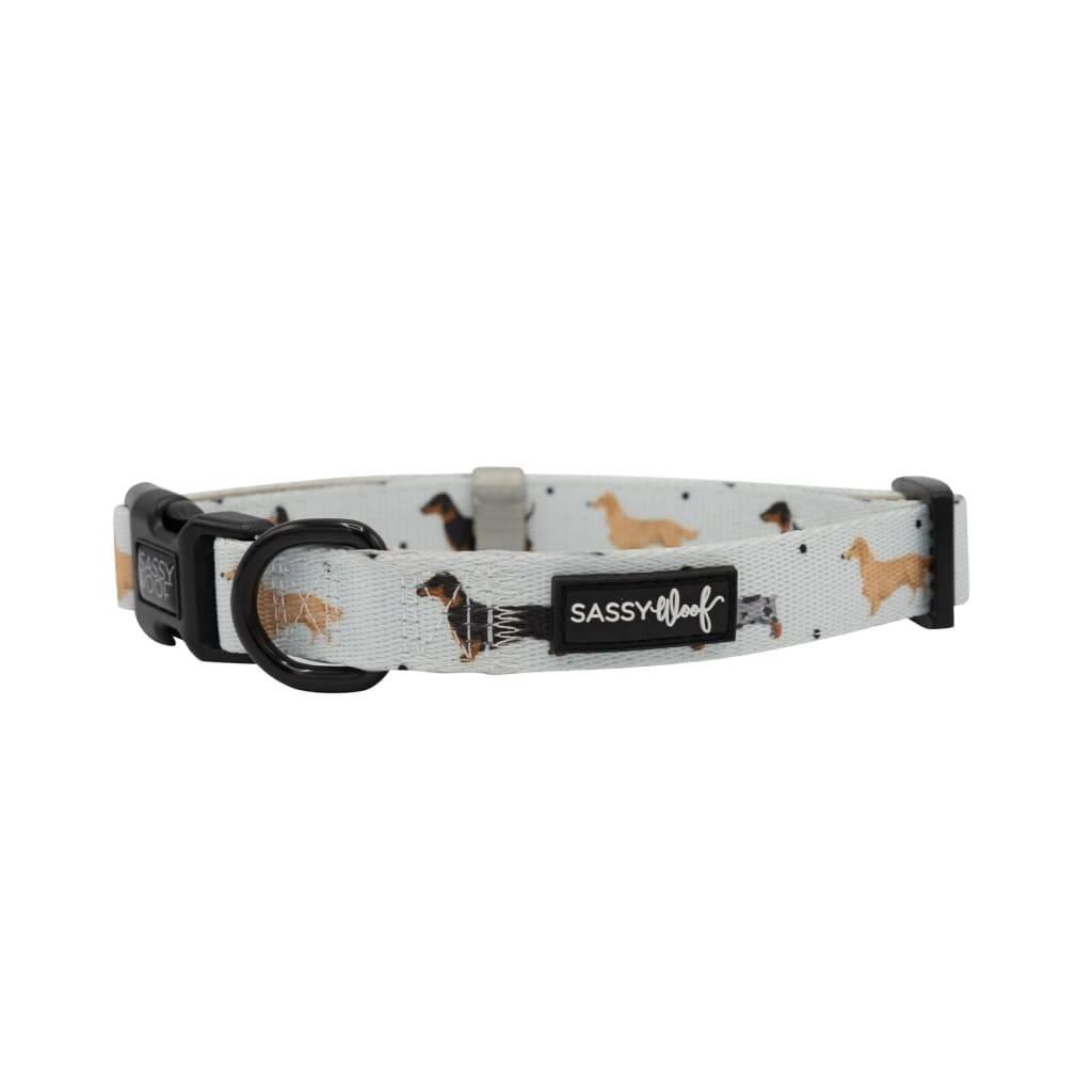 101 Dachshund' Dog Collar https://glammepet.com
