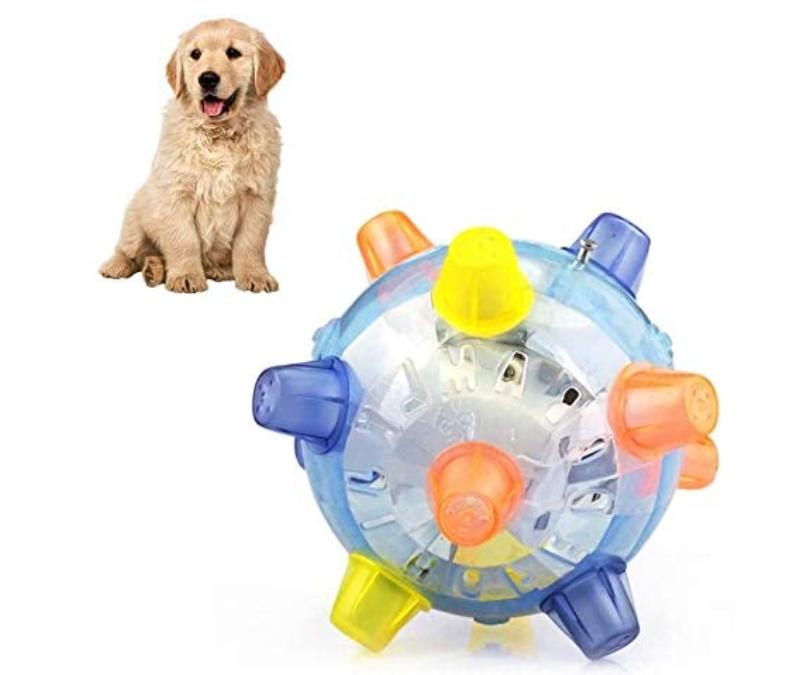 Active Jumping Ball For Dogs https://glammepet.com