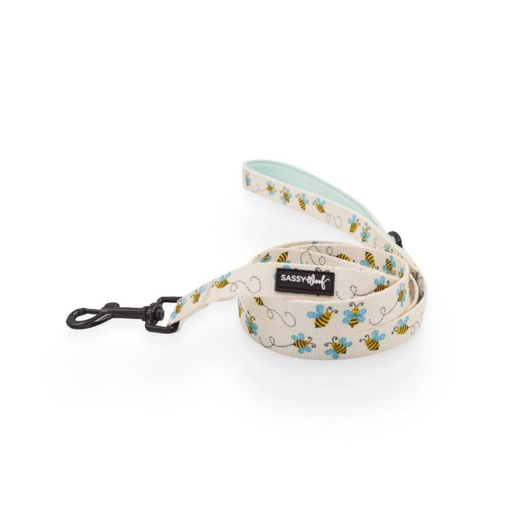 Bee Sassy' Dog Fabric Leash https://glammepet.com