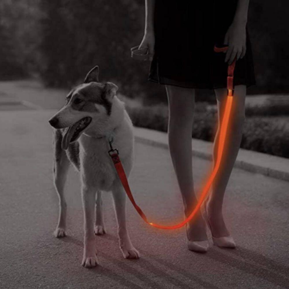 LED Dog Leash https://glammepet.com