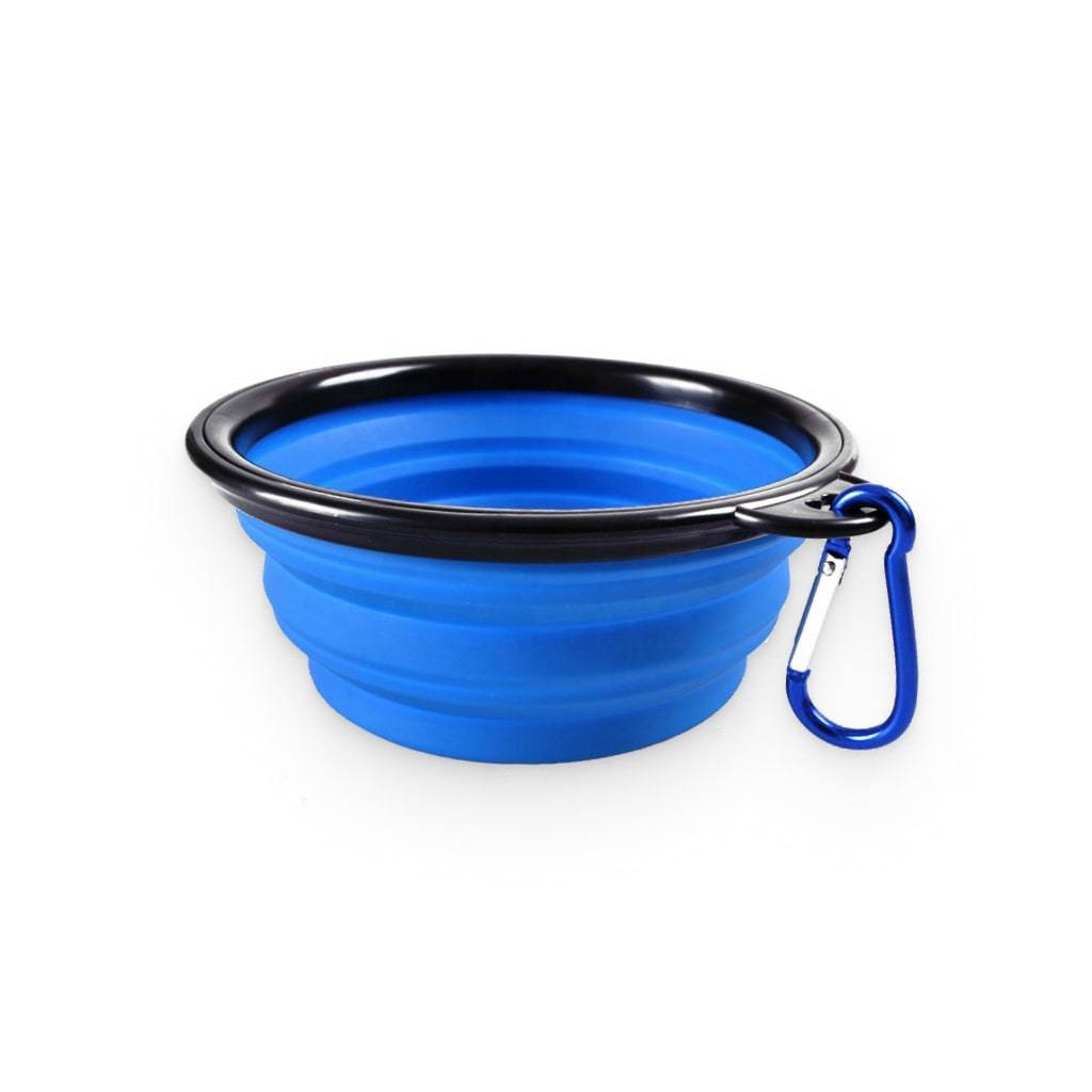 Foldable Dog Feeding Bowl https://glammepet.com